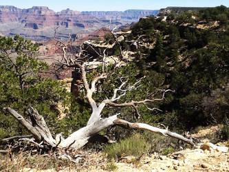 Grand Canyon 2 by PokeTitan