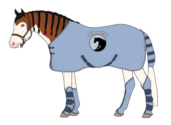 NDS Transport tack by Stripe13