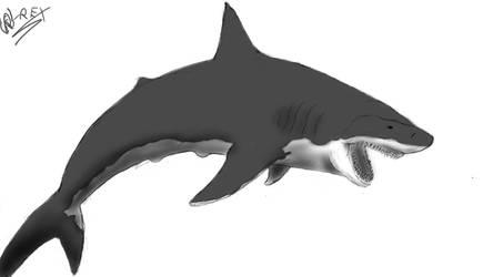 A Shark by Richardosawrus-rex