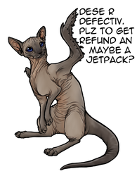 Hairless weasel-cat-bird -KD- by BasiliskZero