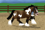 BMa Draft Halter-Lei by DreamingOfHorses67