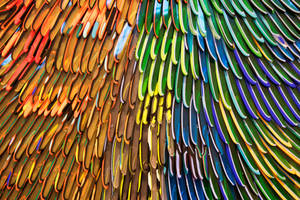 Feathers in Glass by kyidyl