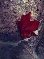 All That Glitters.. by crazyamazinglisa