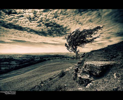 Endeavor by JonnyGoodboy