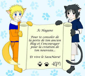 Kitsune et Neko en cadeau by K1M333