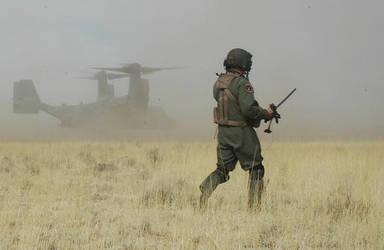 Osprey's Landing by HandBanana001