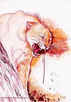 Wild anger by ChristinaMandy