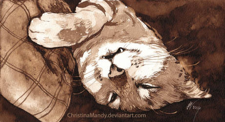 Sleeping Beast by ChristinaMandy