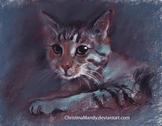 Pastel cat by ChristinaMandy