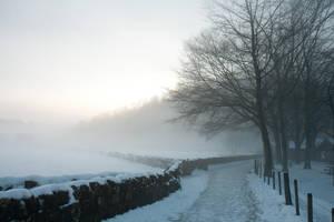 Winter wonderland stock 25 by Random-Acts-Stock