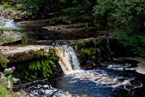 Yorkshire dales stock 28 by Random-Acts-Stock