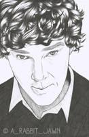 Benedict Cumberbatch by Arabbitjawn