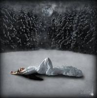 Winter Moon by Nightt-Angell