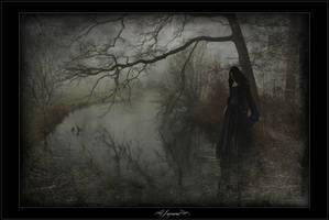 Lament to love by Nightt-Angell