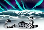 Snow Leopard Aurora by RHPotter