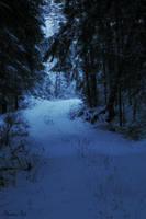 Blue winter by Henu96