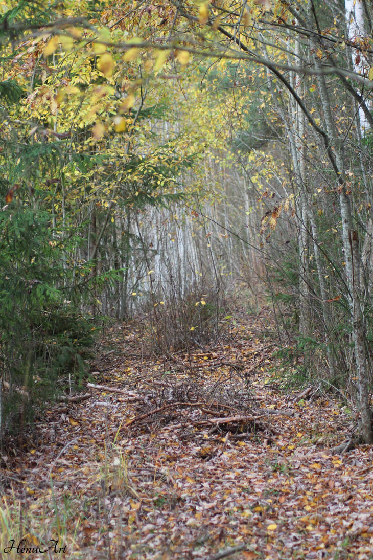 Autum path by Henu96