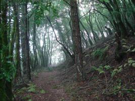 Mountain Path by SephirothXer0-Stock