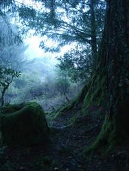 Misty 4 by SephirothXer0-Stock