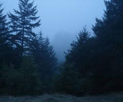 Misty 5 by SephirothXer0-Stock