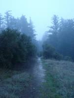 Misty 6 by SephirothXer0-Stock