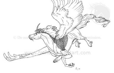 Kal Darel Fly by Freha