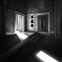 Harem by zepiaf