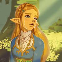 Zelda's Despair by DeathKnightCommander