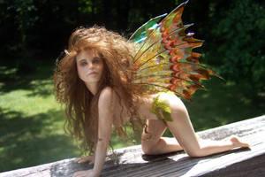 Prowling Fairy by mistweaversrealm