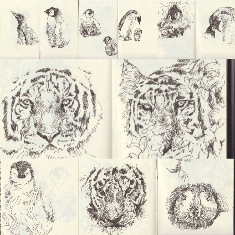 Sketches by marakiO