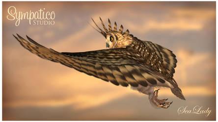 Fly by SeaLady15