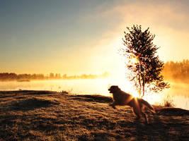 Running to meet the Sunrise by DeingeL