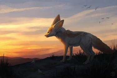 dusk in the desert by Verlidaine