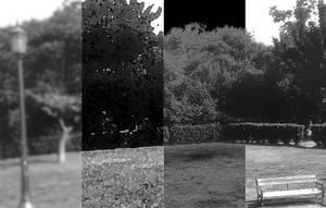 Park Four by dimitriskats