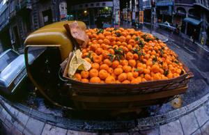 Tangerine dreams by dimitriskats
