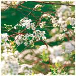 My Hidden Treasure by Hantenshi