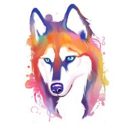 Rainbow Husky by Mythicalpalette