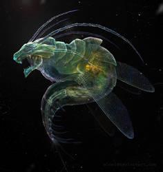 Micro Dragon by eloel
