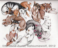 Next Generation PUPPIES by NatsumeWolf
