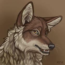 Coywolf by NatsumeWolf