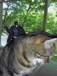 Bats And Comic Show 4-27-2014 055 by manbat57