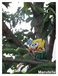 Bob in a tree by Manutella