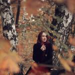 Autumn Leaves by PolinaChernova