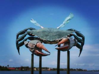 Worlds largest Blue Crab by TexasPanda