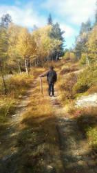 Road To Nowhere by BinaryReflex