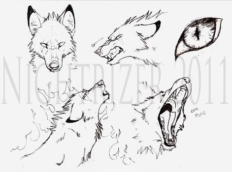 Baskabar Wolf Sketches by Nightrizer