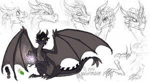 Darkwings concept by Nightrizer