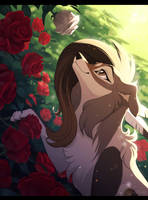 Roses by Nightrizer