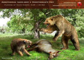 Agriotherium takes away a Homotherium's prey by RomanYevseyev