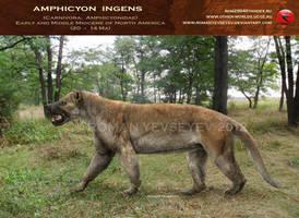 Amphicyon ingens 2 by RomanYevseyev